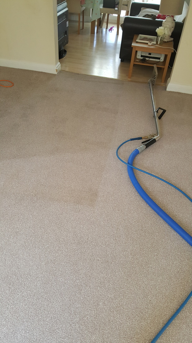 Lincoln carpet clean after.